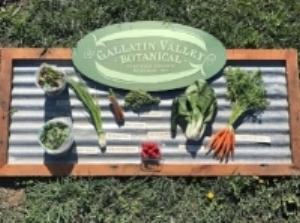 gallatin-valley-botanical.jpg