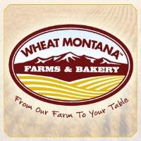 wheat-montana.jpg