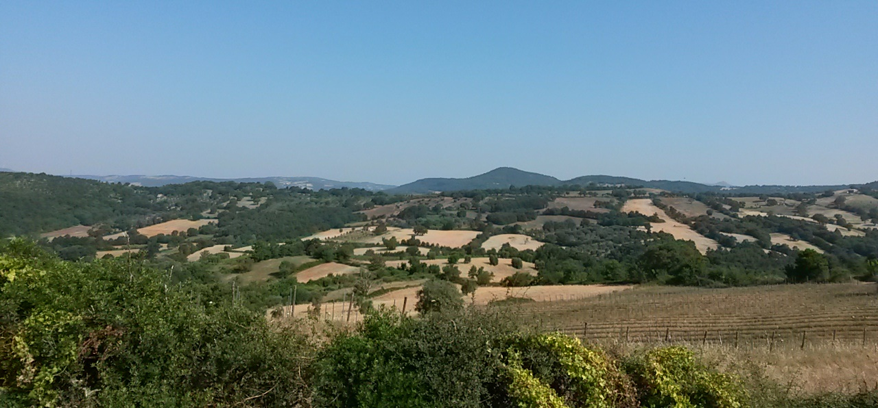 The rolling Tuscan hills - just one of the many enticing holiday destinations offered by  Pinarello Travel
