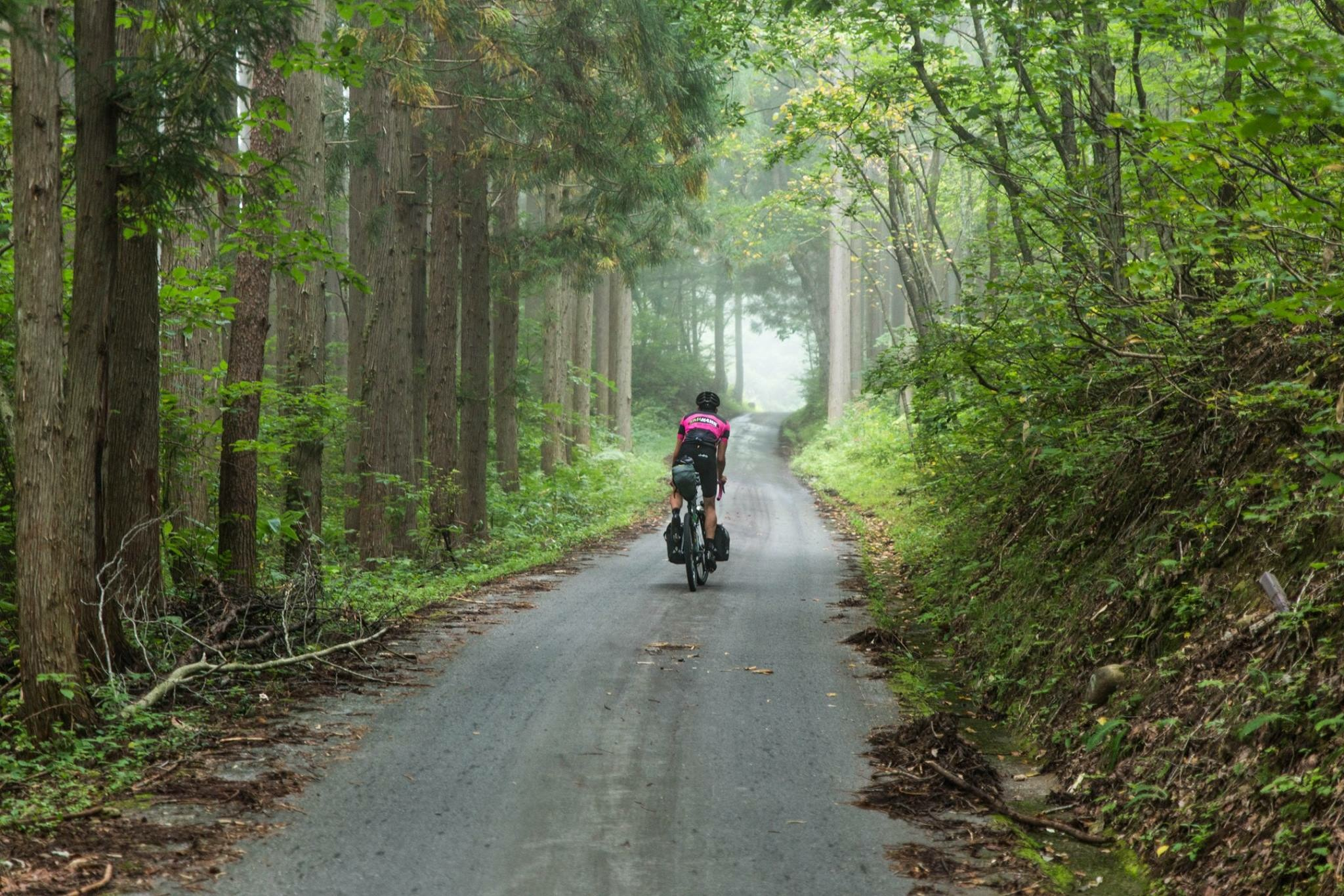 The Japanese Odyssey gives you plenty of opportunities to explore the stunning Japanese landscape
