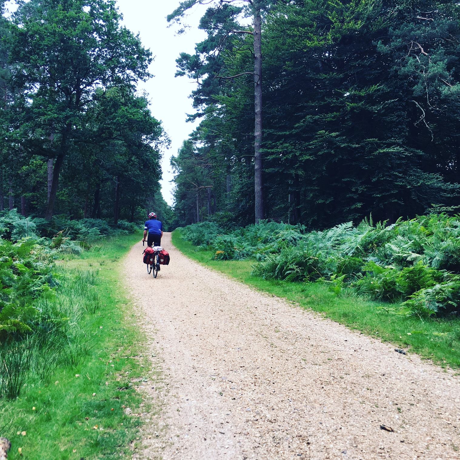 Zinging over gravel roads in the New Forest and charging over rutted mud paths