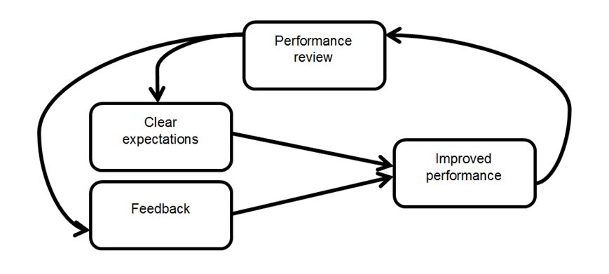 Figure 1: The performance review cycle at EF
