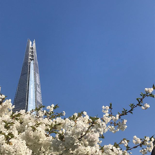 What an amazing morning to be a Londoner! I'm moving house next week and will be leaving my beloved Bermondsey to go west down the river... thank you for 4 fab years #bermondsey #theshard #bermondseystreet #nofilterneeded