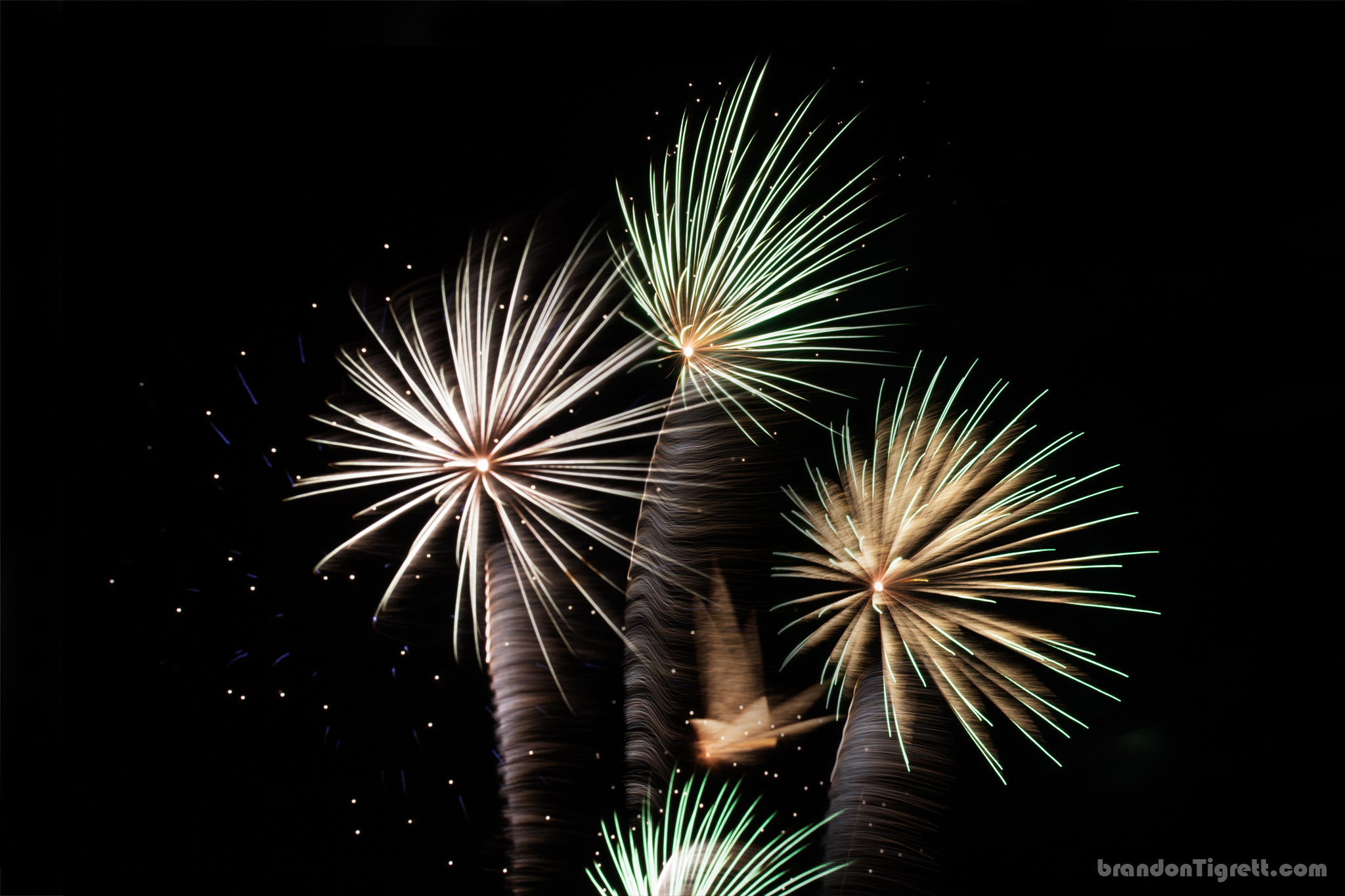 Creative Fireworks Photos - 4th of July