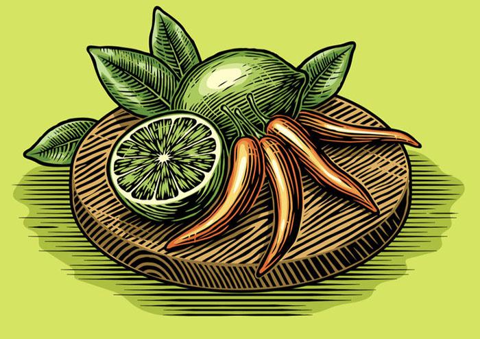 scraper board illustration of food for package design