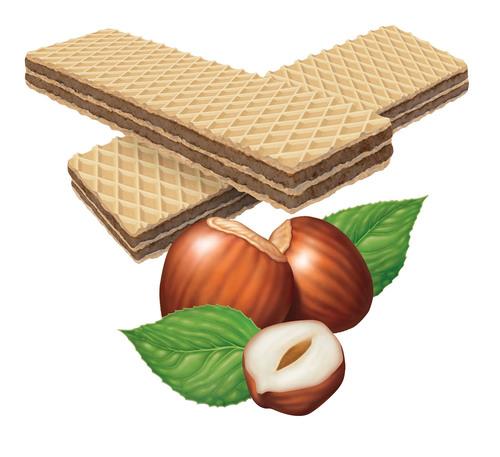 hazelnut and biscuit illustration for package design