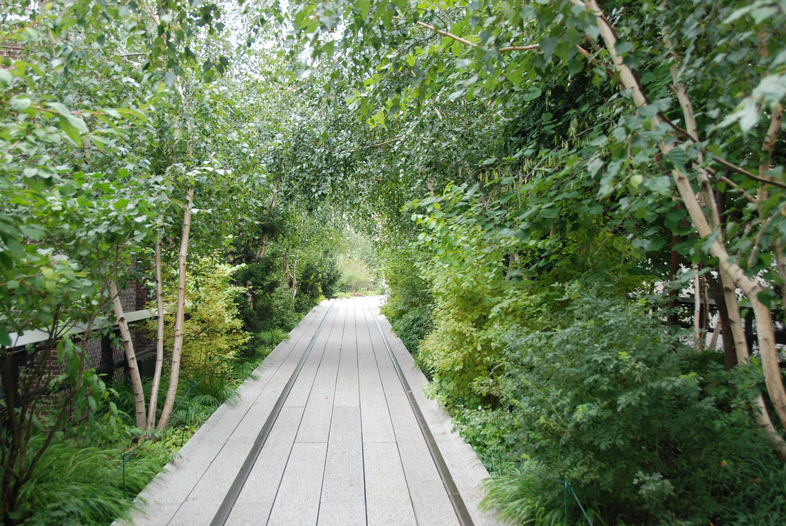 Ztracená trať v džungli? Kdepak. Jste stále uprostřed jednoho z nejrušnějších měst na světě, několik metrů nad zemským povrchem. Vítejte na High Line v New Yorku. (foto: Libor Hinčica)