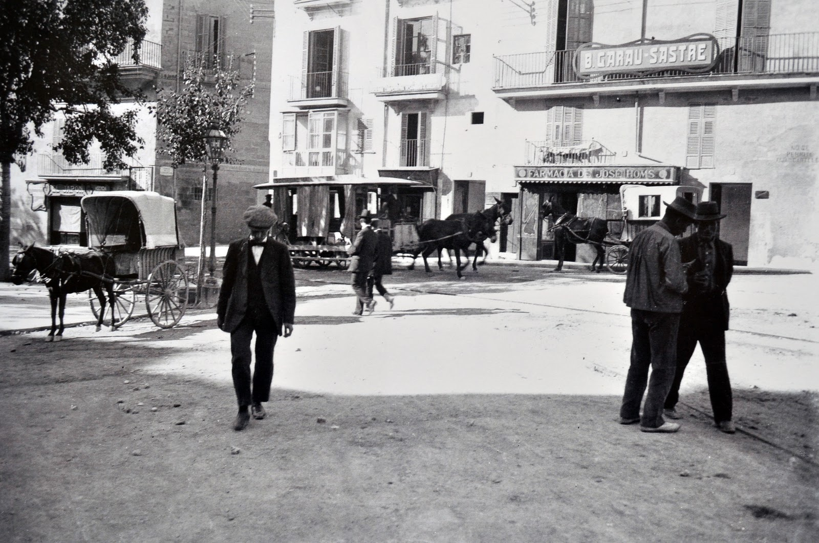 Dlouhá léta sloužila v ulicích Palmy pouze koňka. (zdroj: Wikipedia.org)