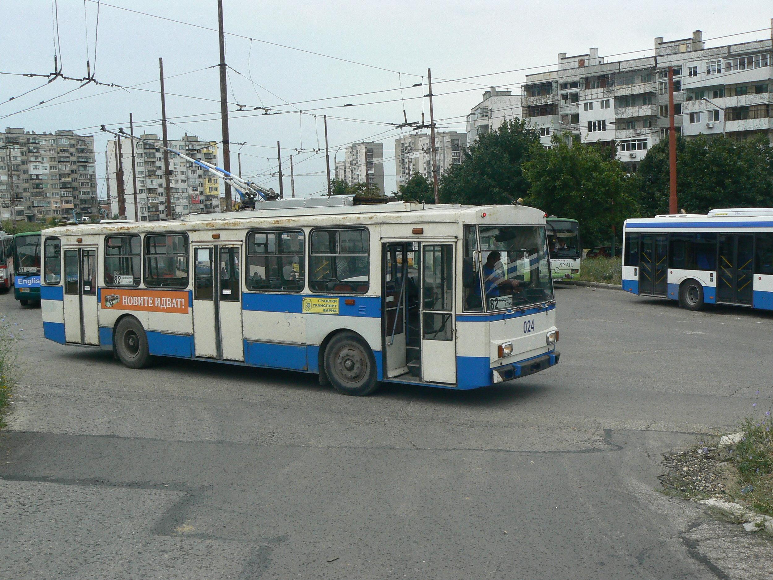 P1050460.jpg
