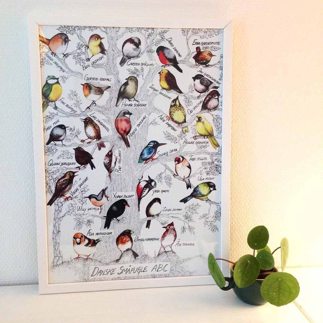 Fugle ABC i ramme.jpg