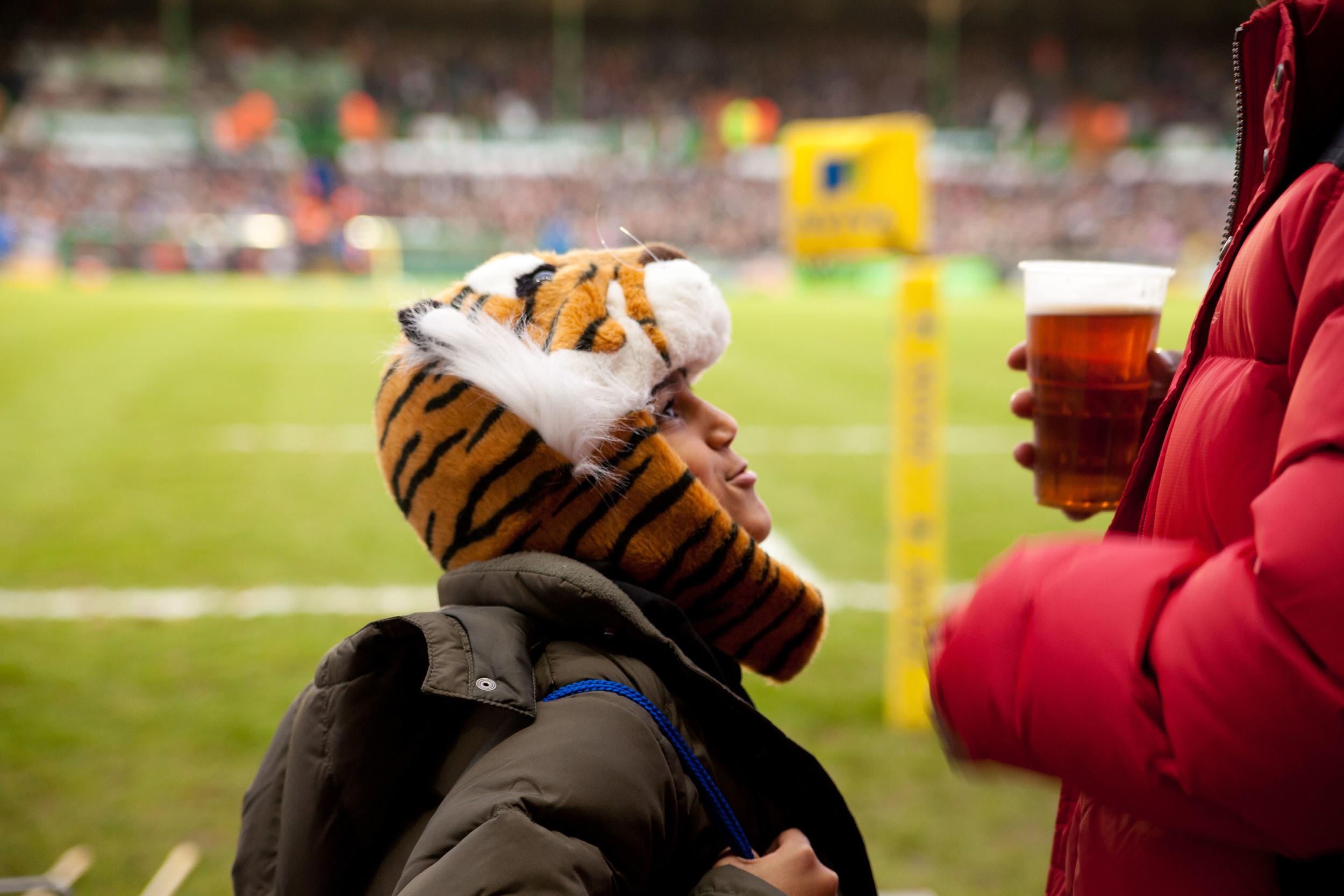 tigers--2.jpg