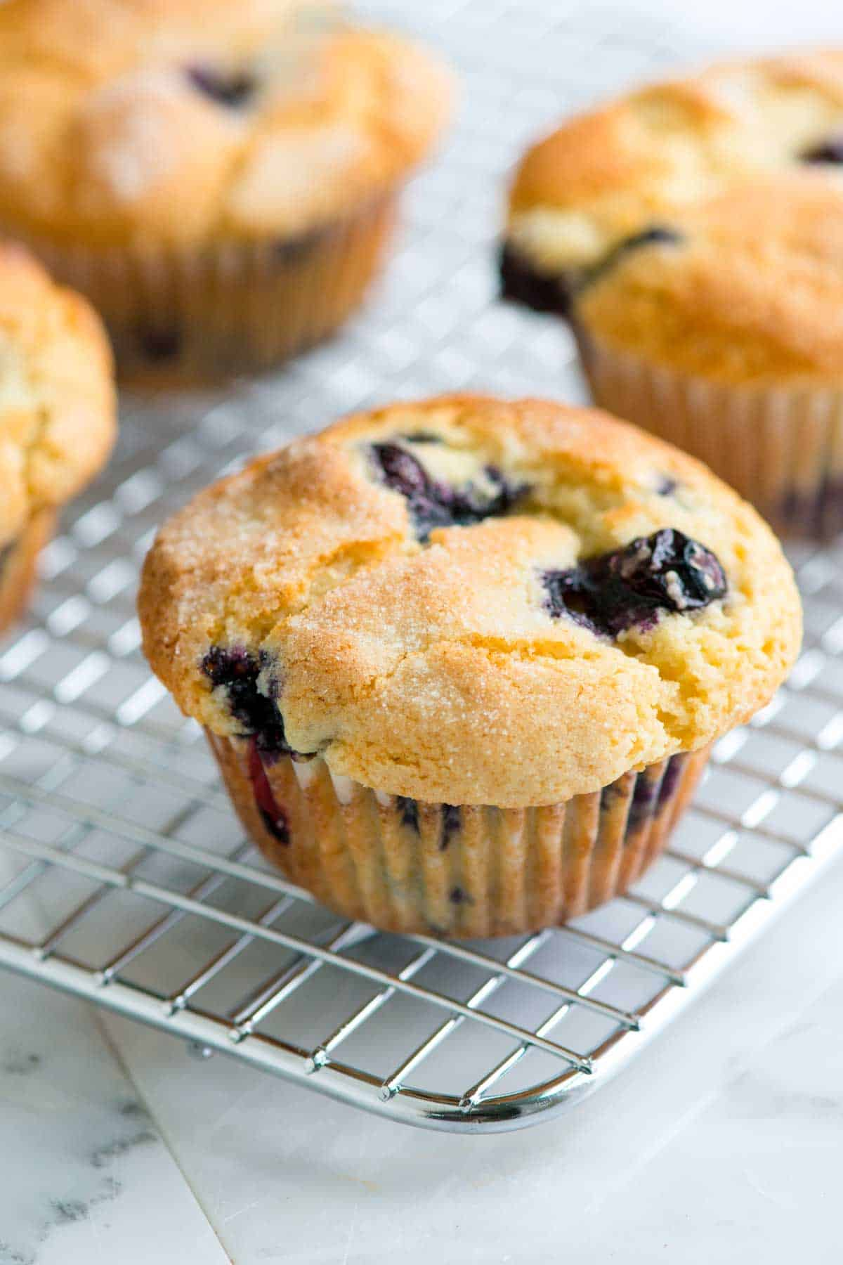 Easy-Blueberry-Muffin-Recipe-1-1200.jpg