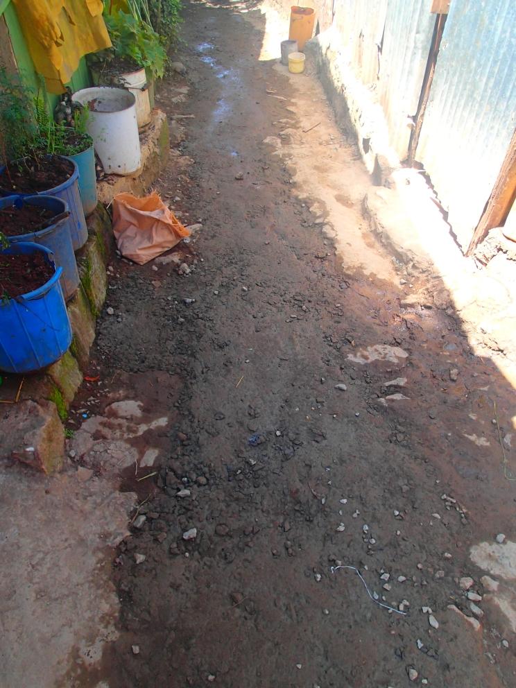 Toilet Project 1 - 8.jpg