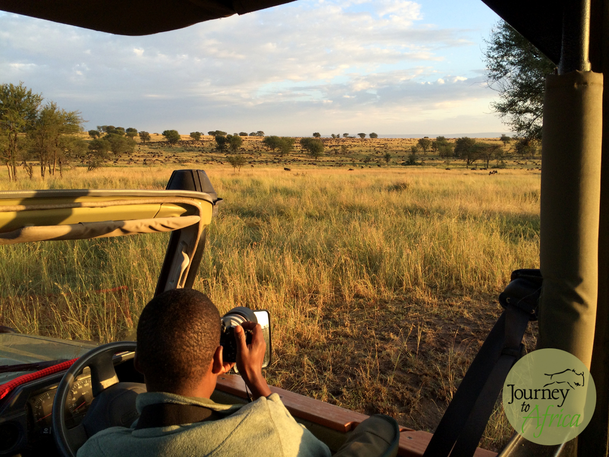 My Safari guide Reuben with my camera clicking the Wildebeest arriving into Northern Serengeti.