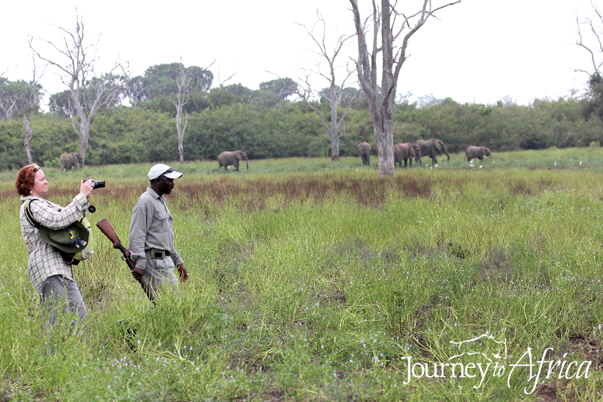 sand_river_walking_safari.jpg