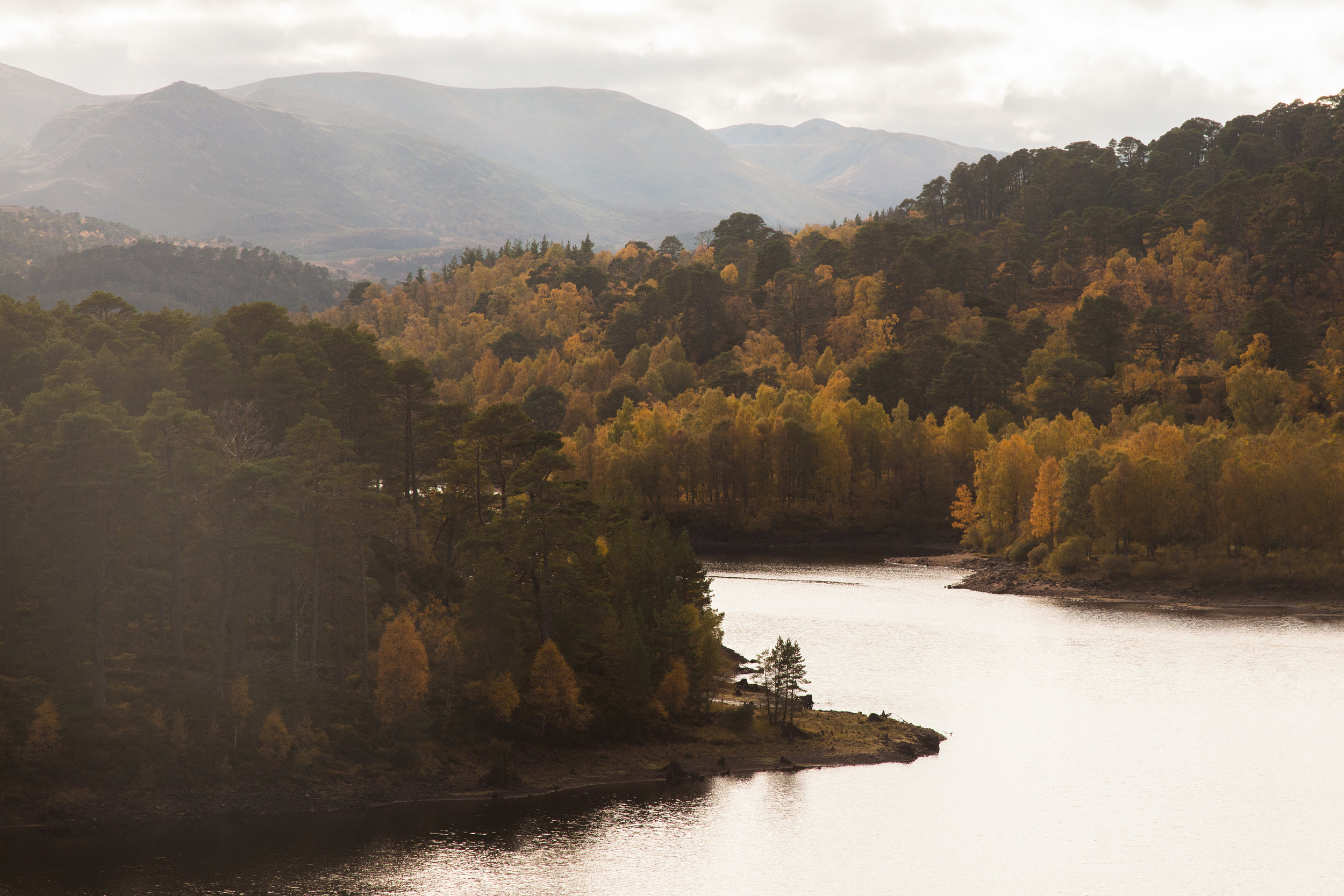 Best for forests and wildlife - Loch A'Mheadhoin.jpg