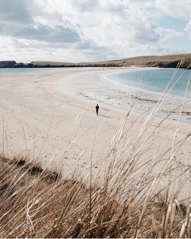Chapter 9. Shetland 🌾