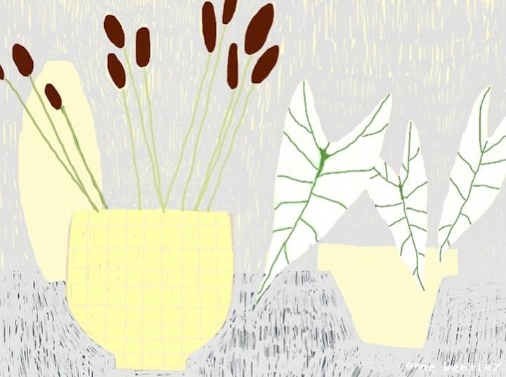 anne_bentley_reeds.JPG