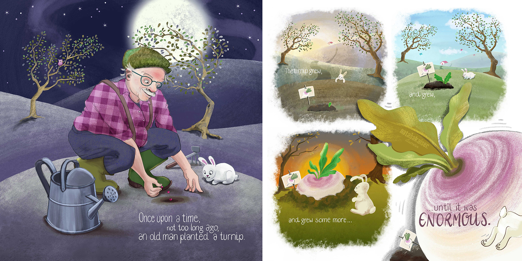 My double page spread shows a sequence of images from the turnip being planted to growing enormously big during the turn of one day – just for the fun of painting different daytimes.