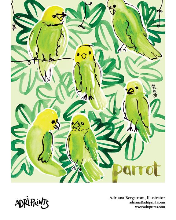 AdrianaB_parrots.jpg