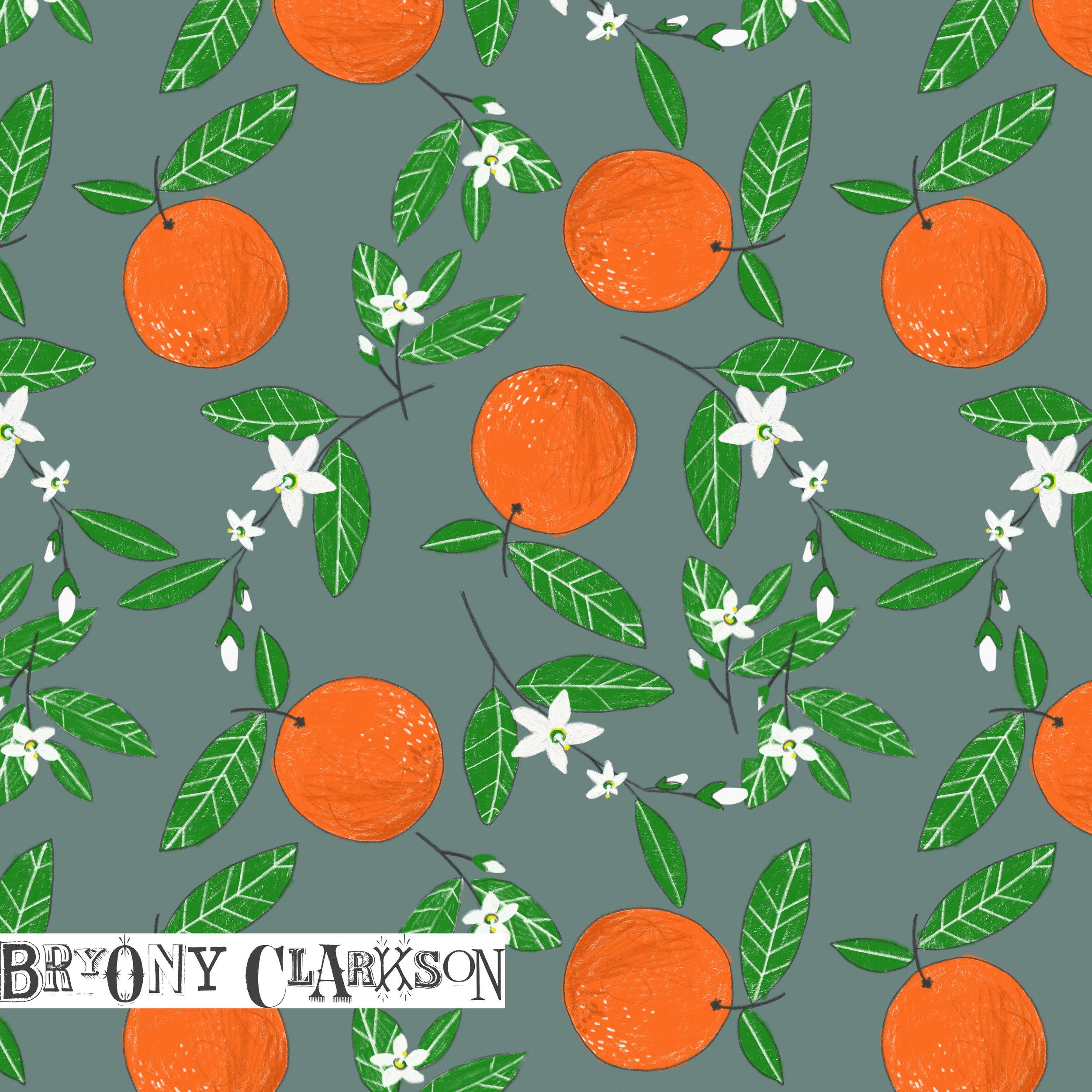 BC_Oranges_LR.jpg