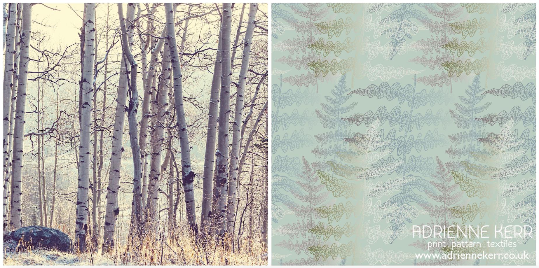 Birch & Fern 01.jpg