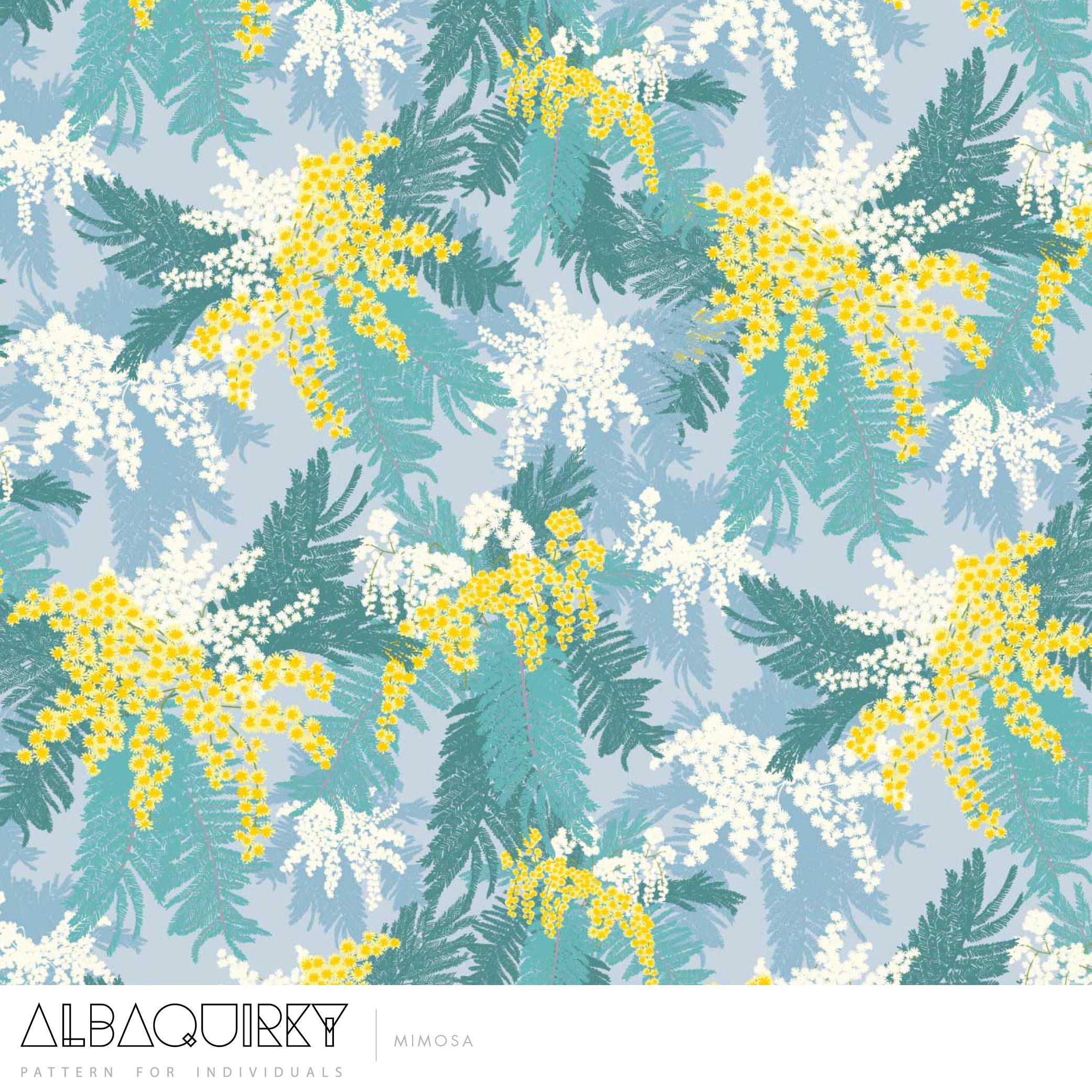 albaquirky_mimosa.jpg