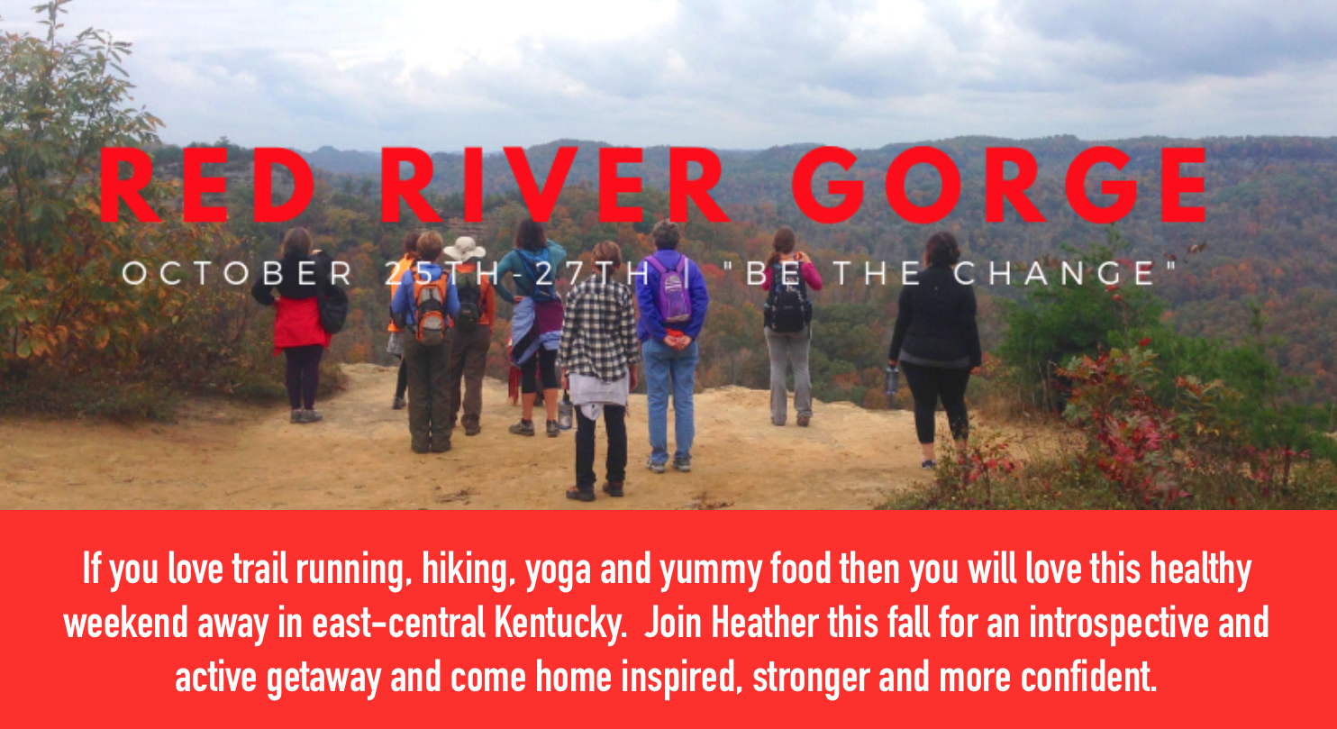 red river gorge banner.png