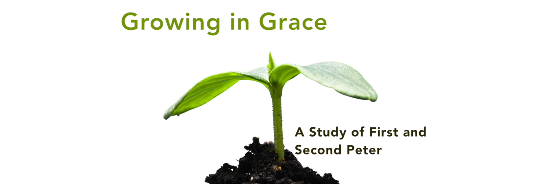 Growing in Grace.jpg