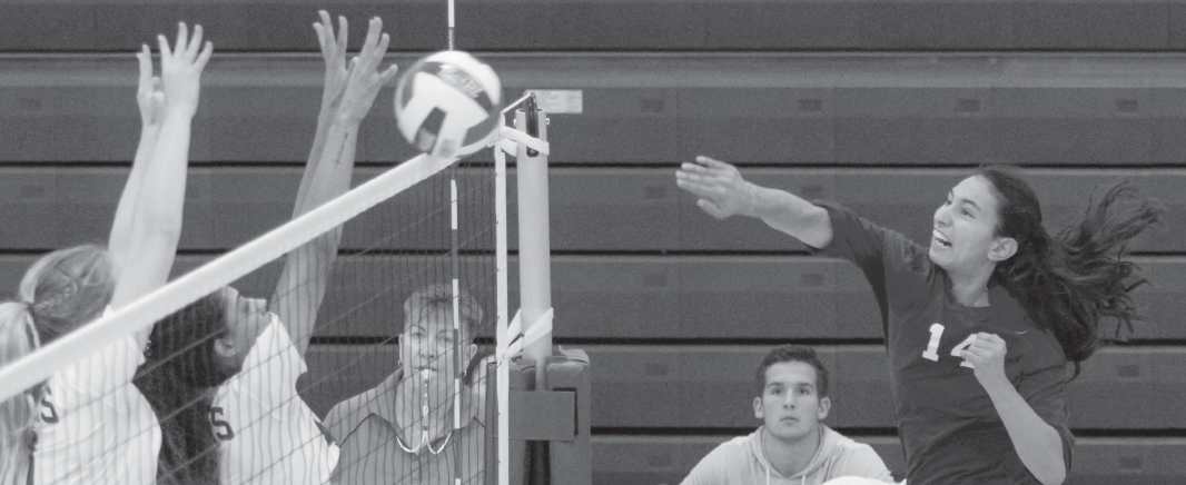 Lorena Perez goes for the spike in the game against Brookhaven College on Sept. 26.