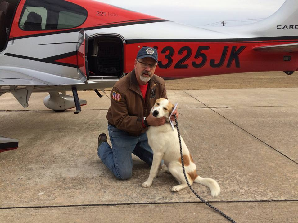 Our First Service Dog w/pilot