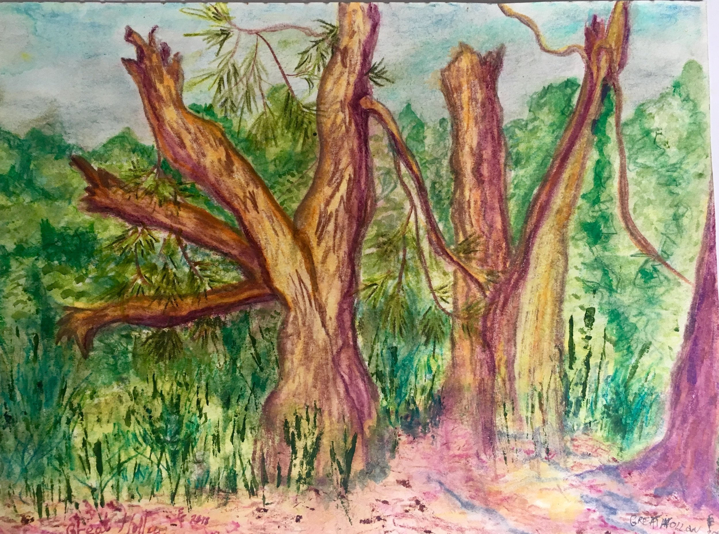 """Mixed media watercolor done au plein air at Great Hollow Nature Preserve, 9x12"""" framed"""