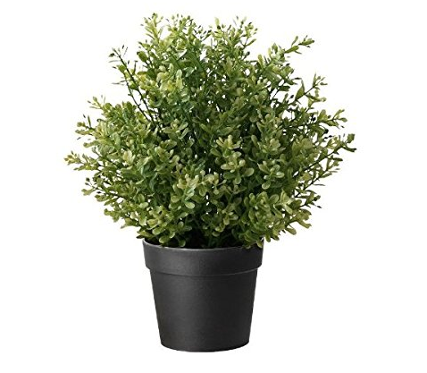 "<a target=""_blank"" href="""">Ikea Artificial Potted Plant, Thyme, 9.5 Inch</a><img src=""//ir-na.amazon-adsystem.com/e/ir?t=imperfectsimp-20&l=am2&o=1&a=B00HWFZ2KE"" width=""1"" height=""1"" border=""0"" alt="""" style=""border:none !important; margin:0px !important;"" />"