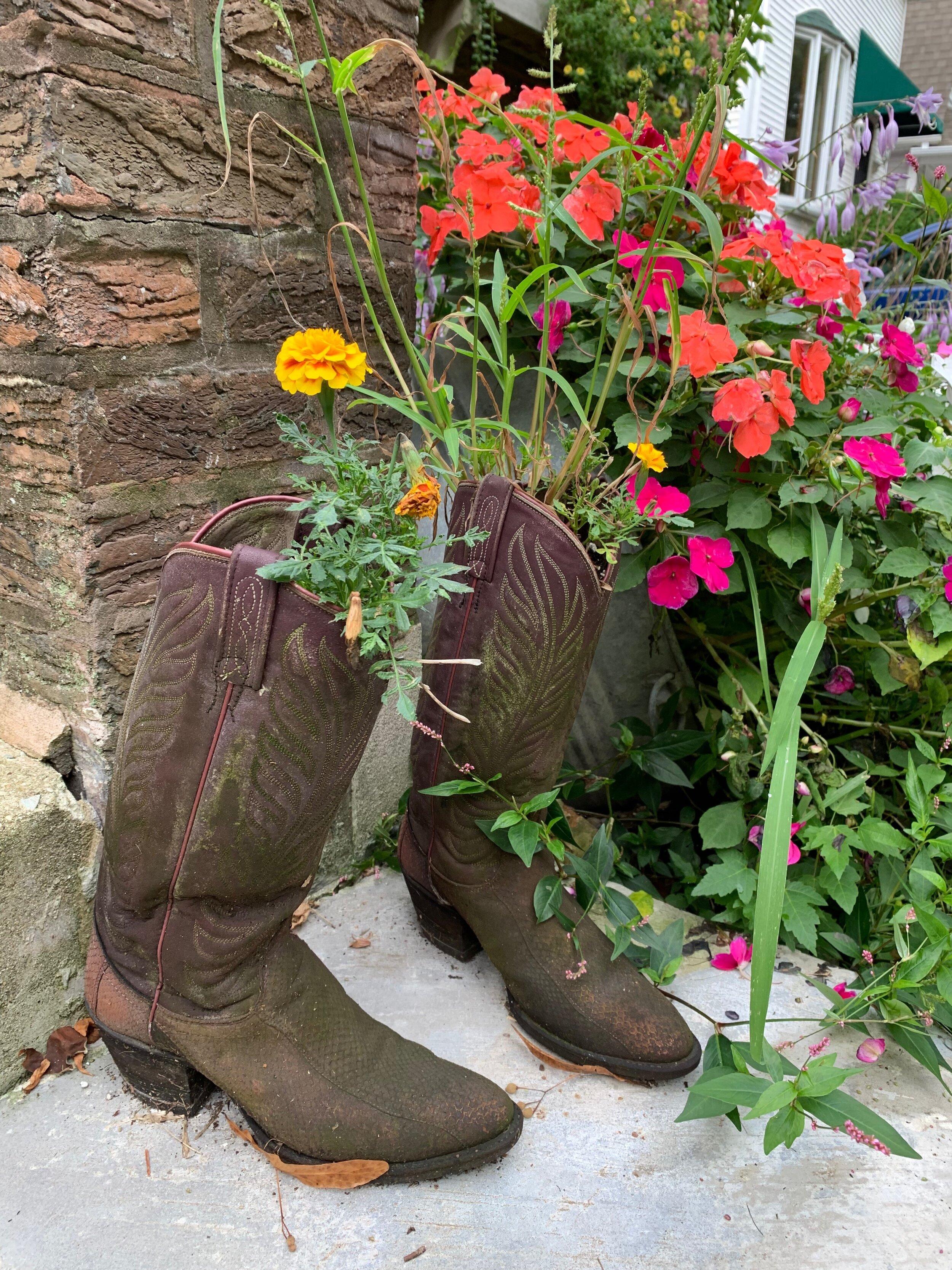 Boots Planter #30DayNatureChallenge.jpg