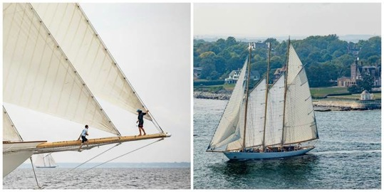 The 213-foot (65m) three-masted schooner Adix sails off Newport's historic Cliff Walk during the 2016 Candy Store Cup.  (photo credit: Rod R. Harris) Click photo to download this and other photos in high resolution