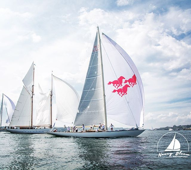 Just one week to go until 2019 Candy Store Cup 🍭🍬 ⚓️ 🧜♀️ 📸 @nancybloomphotography #newportshipyard #candystorecup #bannisterswharf #newport