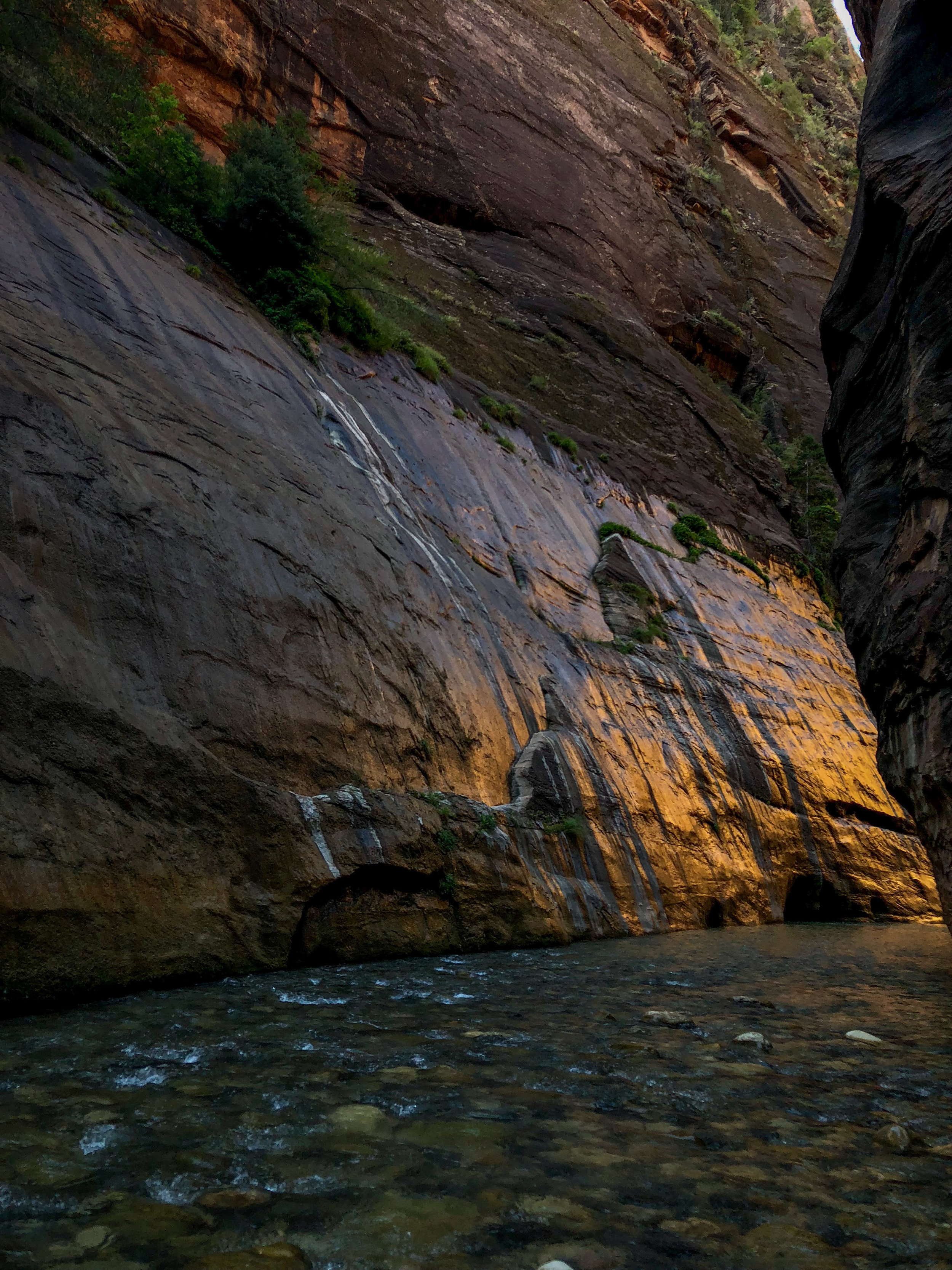 Early into the hike, this is how the walls looked with the sun coming up through the canyon.