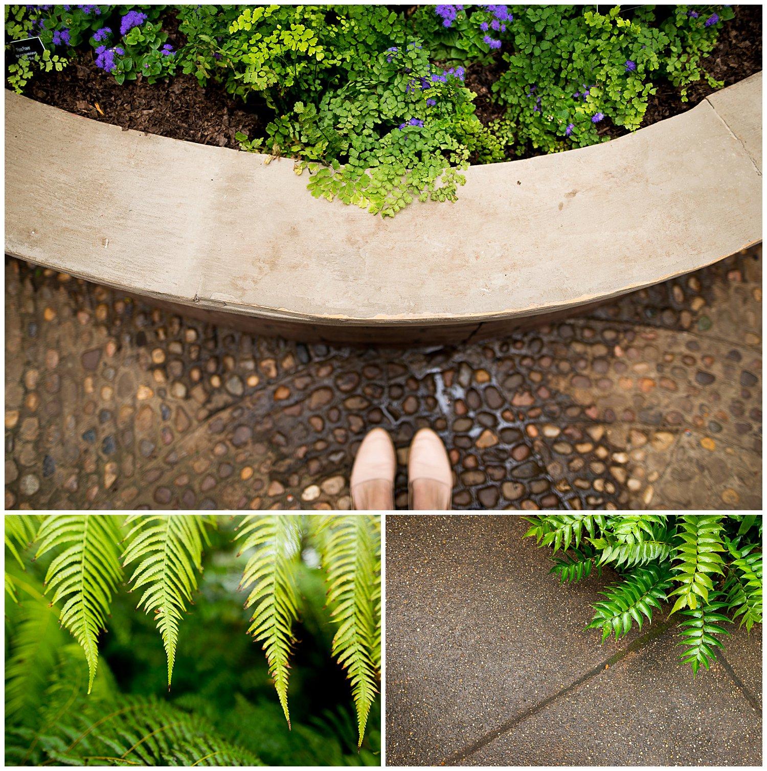 greensburg-photographer-clickin-walk-2016.jpg