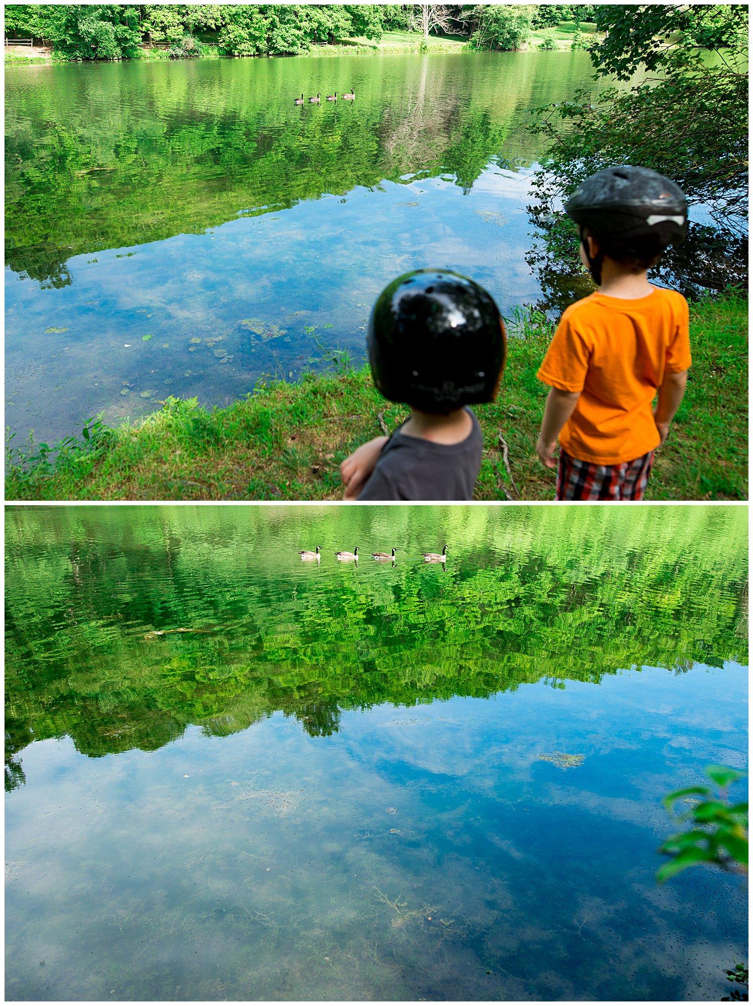 lake and ducks at Twin Lakes park
