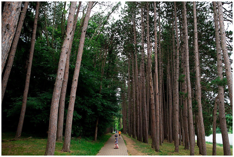 path at Twin Lakes Park