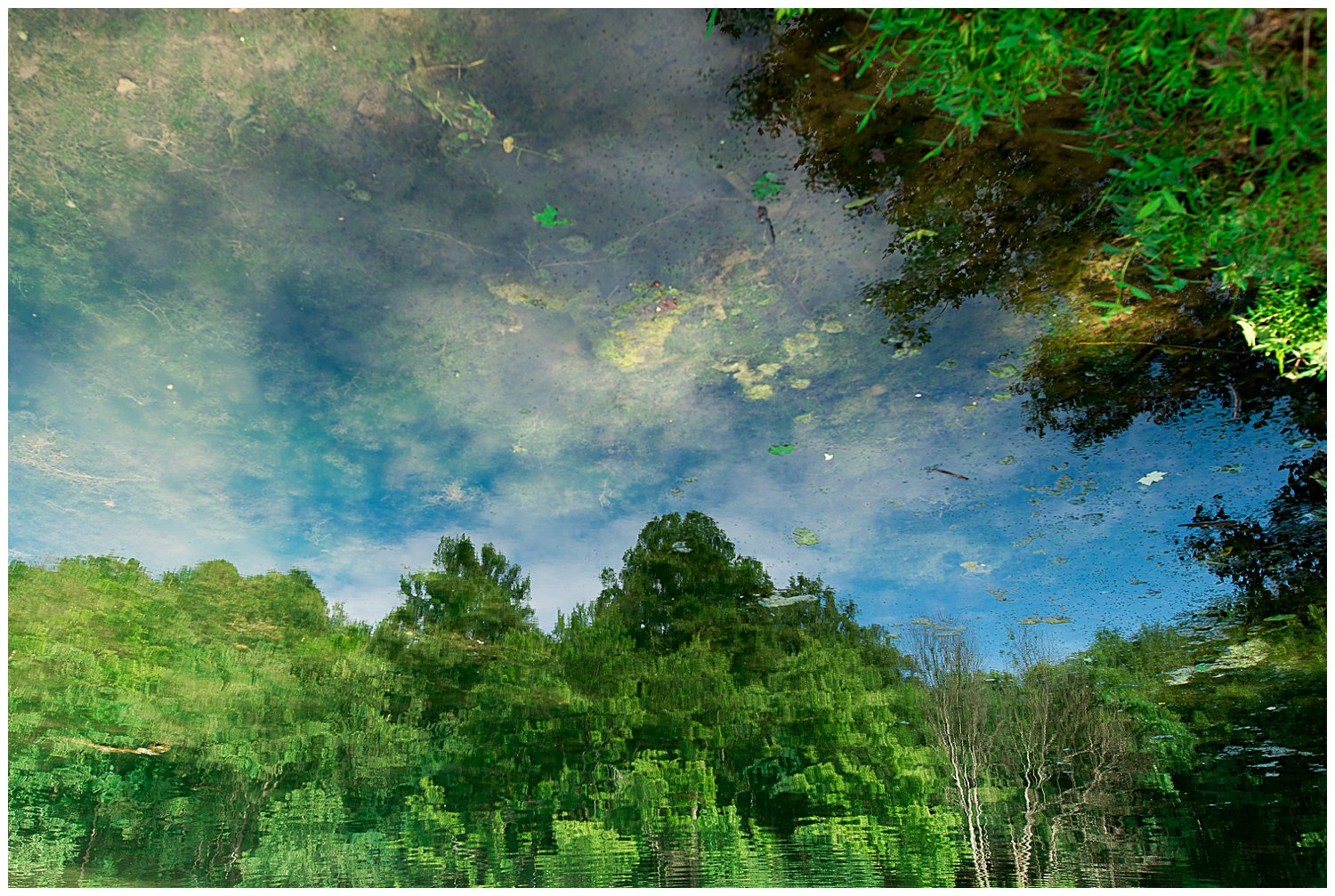 reflection of water and trees at Twin Lakes Park