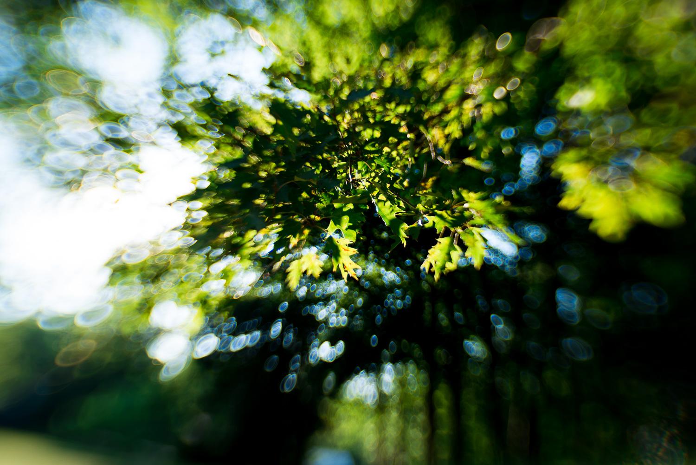 little-story-studio-greensburg-photographer-48.jpg