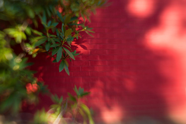 little-story-studio-greensburg-photographer-30.jpg