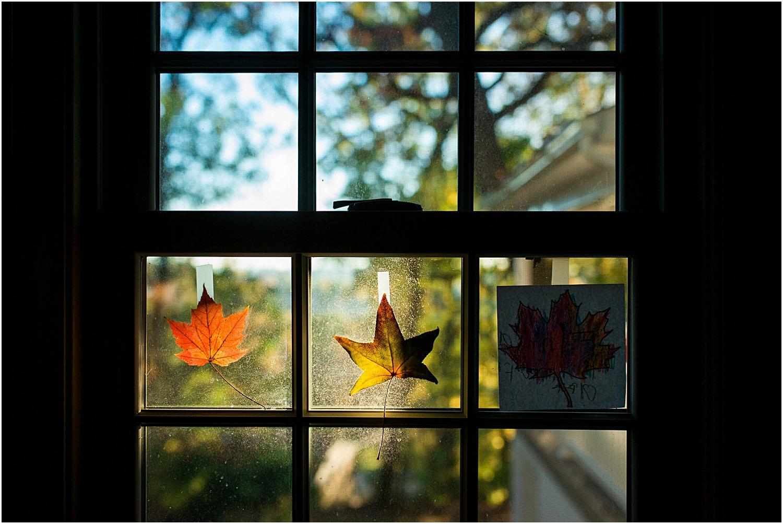 pittsburgh-family-photographer-fall-31.jpg