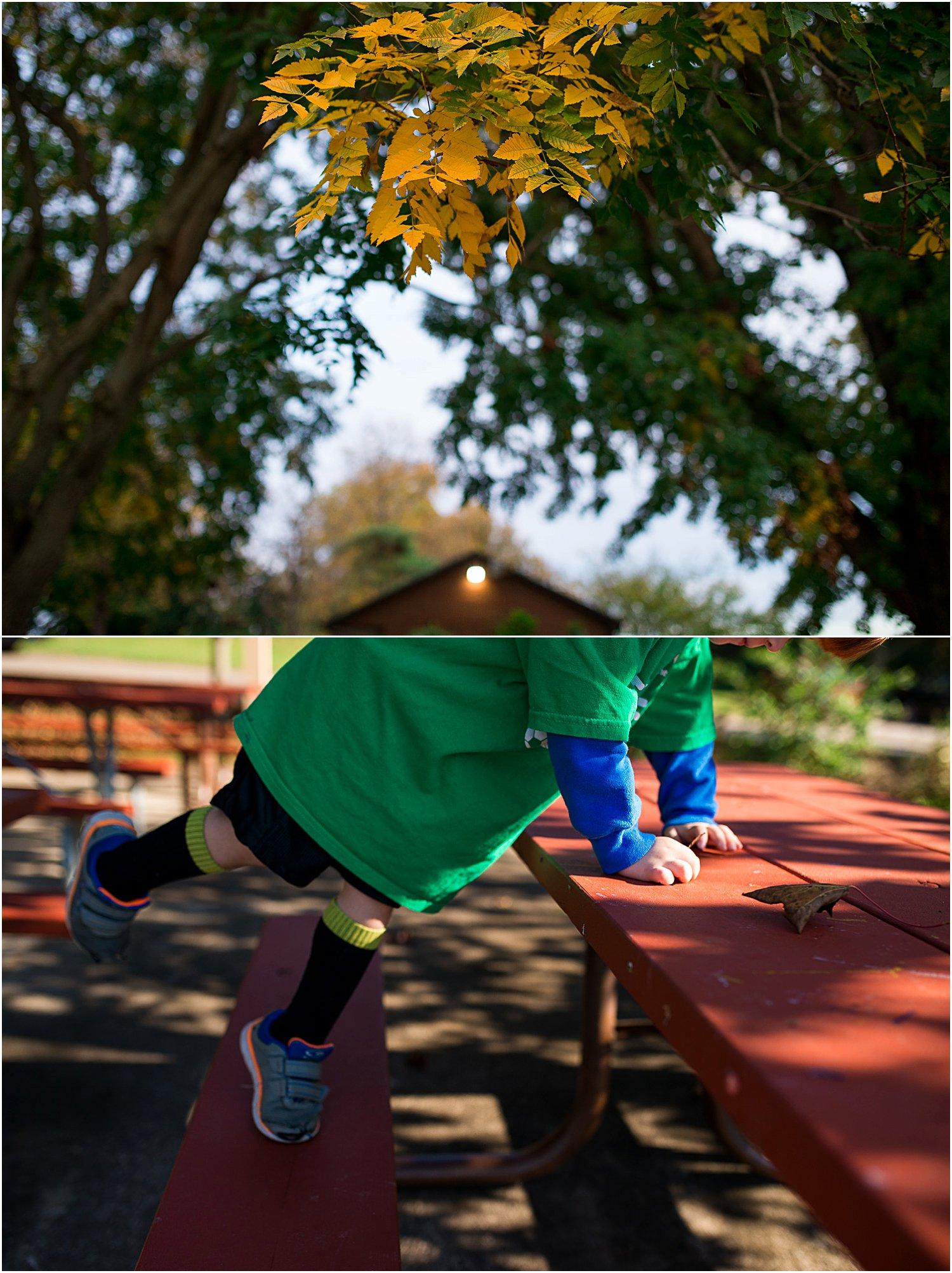 pittsburgh-family-photographer-fall-21.jpg