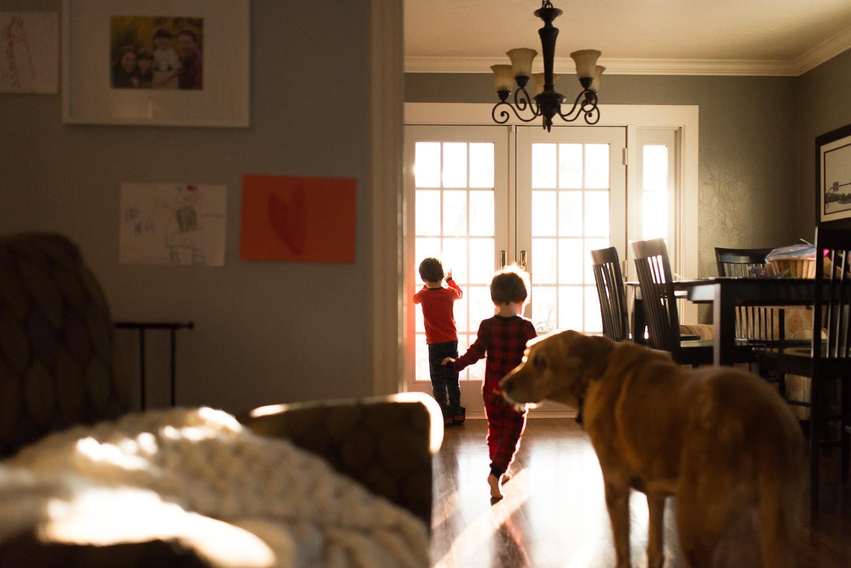 pittsburgh-family-photographer-7.jpg