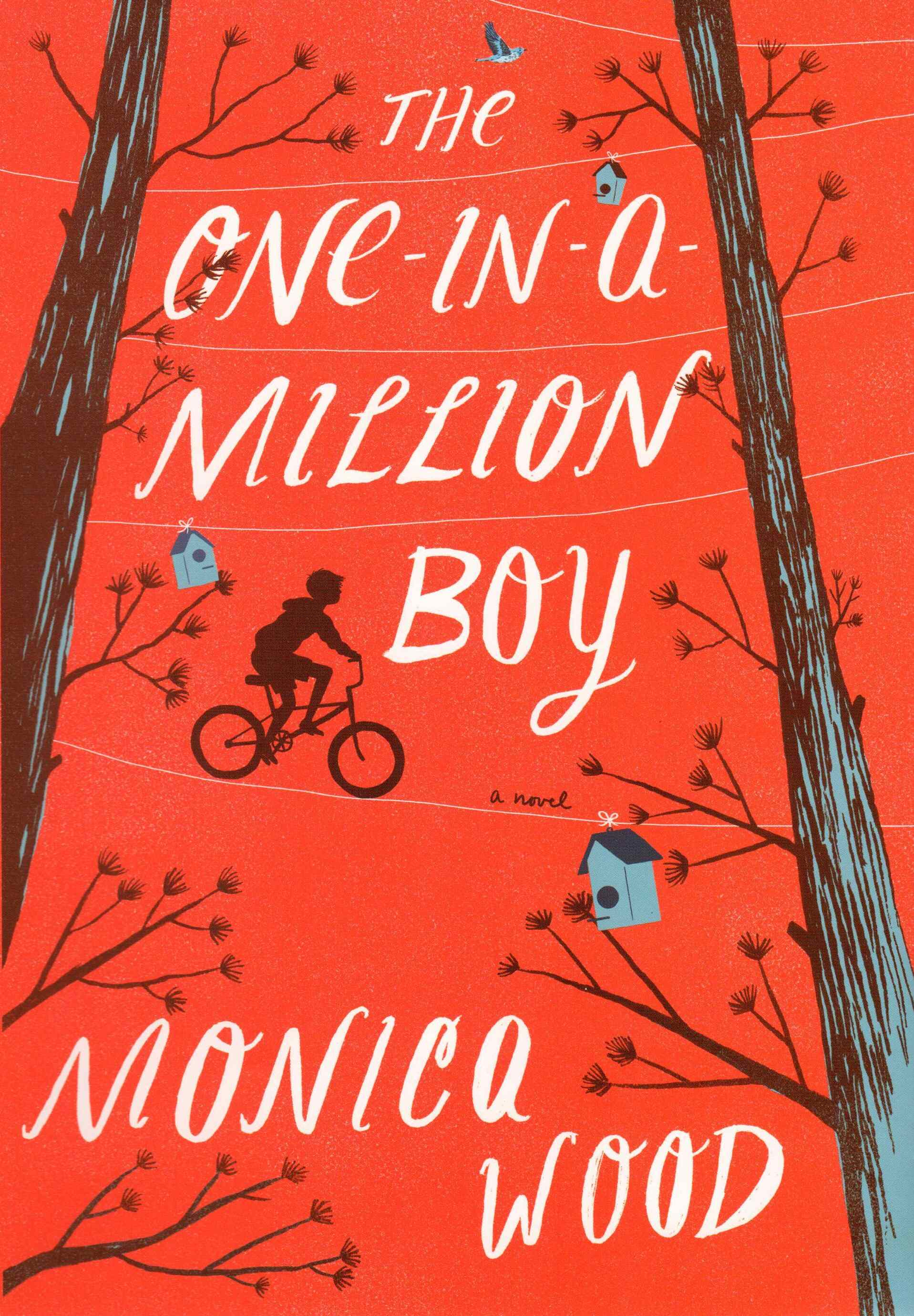 One in a Million Boy by Monica Wood