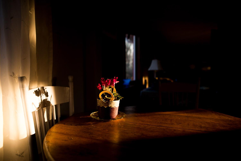pittsburgh-family-photographer-38.jpg