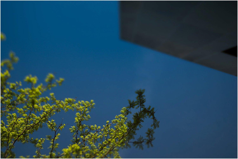 pittsburgh-family-photographer-138.jpg
