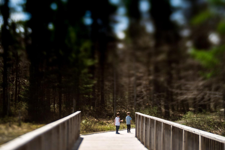 pittsburgh-family-photographer-209.jpg